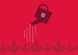 Як просувати в Instagram малий та середній бізнес?