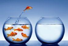15 порад розробникам про те, як поліпшити кар'єру