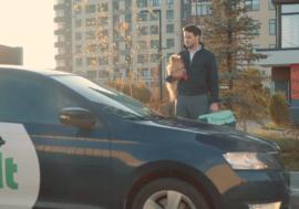 Bolt запускає послугу перевезення домашніх тварин Pets