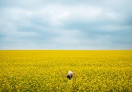 Опубліковано ТОП-10 аграрних онлайн-видань України від PRNEWS.IO