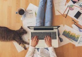 Робота на карантині: 17 онлайн-сервісів для віддаленої роботи