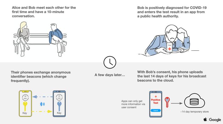 Apple і Google об'єднуються проти COVID-19: в iOS і Android з'явиться система для боротьби з поширенням хвороби - tech, news, zhyttya