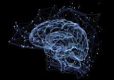 П'ять лайфхаків для мозку, які допоможуть поліпшити пам'ять