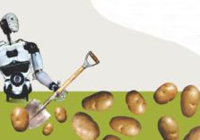 «Копаючи картоплю, ви час від часу викопуєте ту, яку садив ще ваш батько і дід. Це legacy-код». Пояснюємо ІТ-терміни на прикладі садіння картоплі