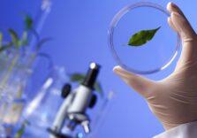 Що таке синтетична біологія і як вона змінить наше життя