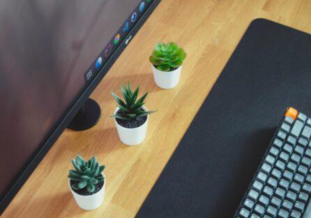 10 JavaScript-фреймворків, які варто вивчити в 2021 році