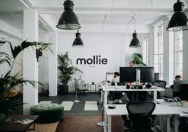 Нідерландський стартап Mollie став третьою за величиною фінтех-компанією в Європі