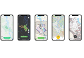 Bolt, Kiwi, Scroll, BikeNow і Zelectra – порівняння сервісів прокату електросамокатів в Києві