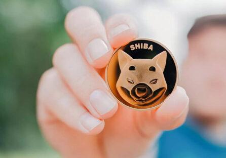 SHIBA inu coin й Ілон Маск: вартість криптовалюти зросла на 400% за кілька днів.